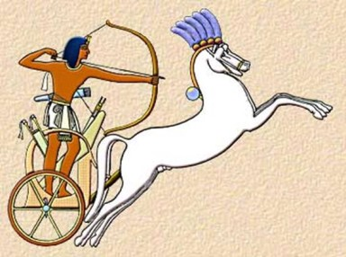 Egyptian charioteer, unknown source