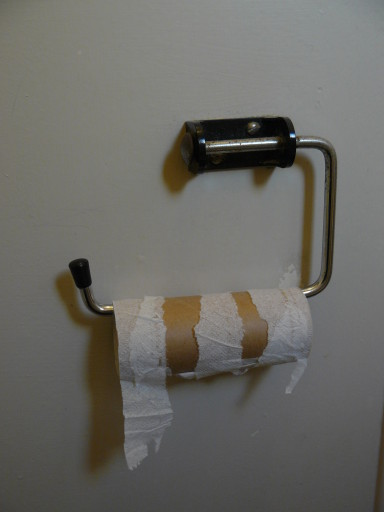 Toilet roll 2